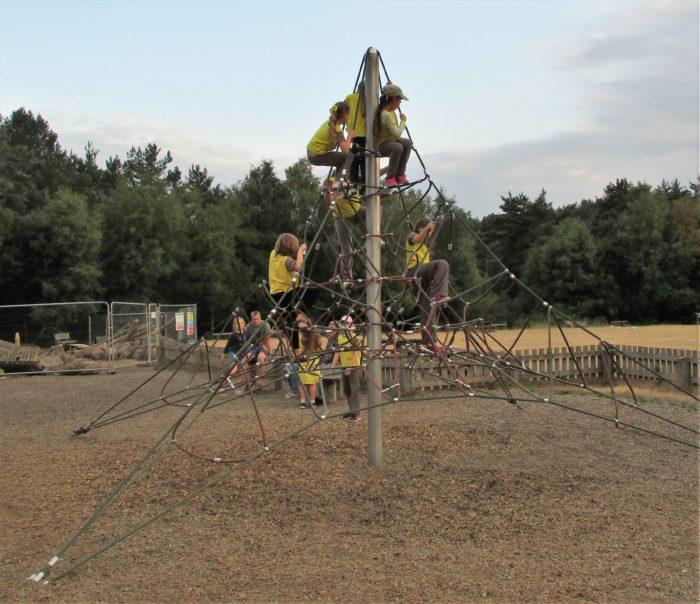 Having fun at Avon Heath Country Park