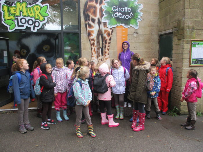 Brownies at Marwell Zoo